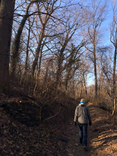 hiking through the wissahickon