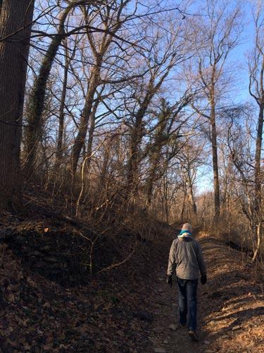 hiking through the wissahickon