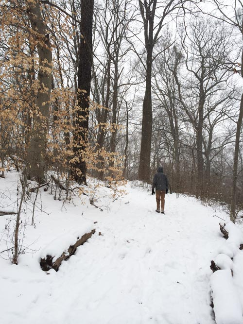 snowy wissahickon trails