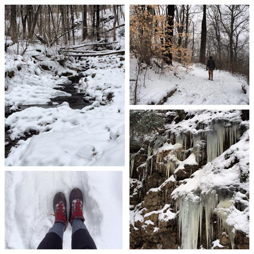 snowy trails in the wissahickon