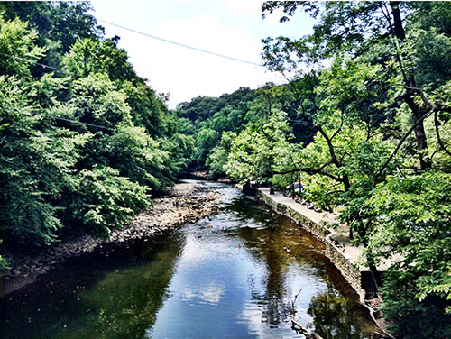 a view of wissahickon park