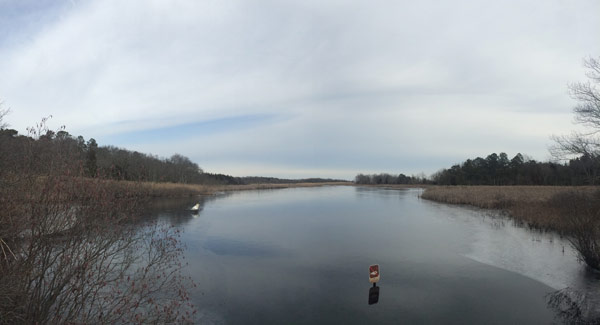 a view of the water at the wildlife refuge